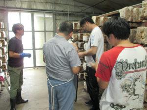 施設外椎茸製造